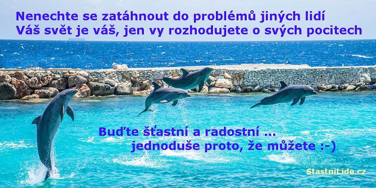 Šťastní delfíni