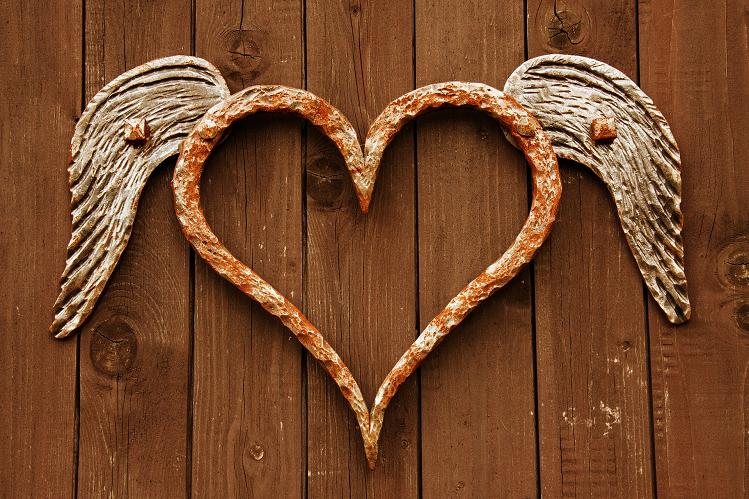 Srdce s křídly