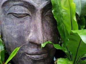 klid zen buddha