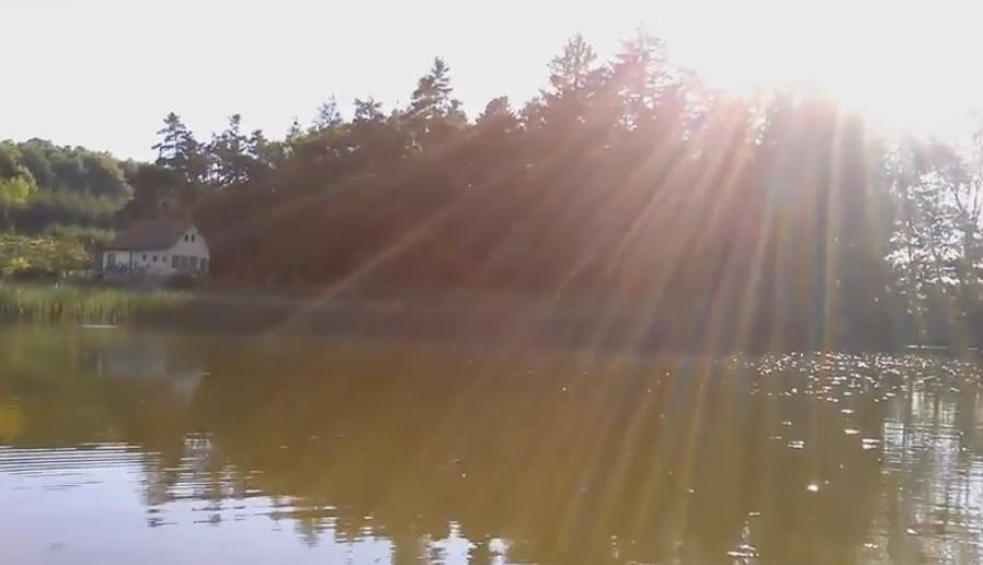Rybník Pecerady