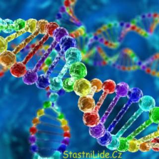 DNA šťastných lidí titulka