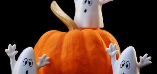 halloween-dýně-hokkaido